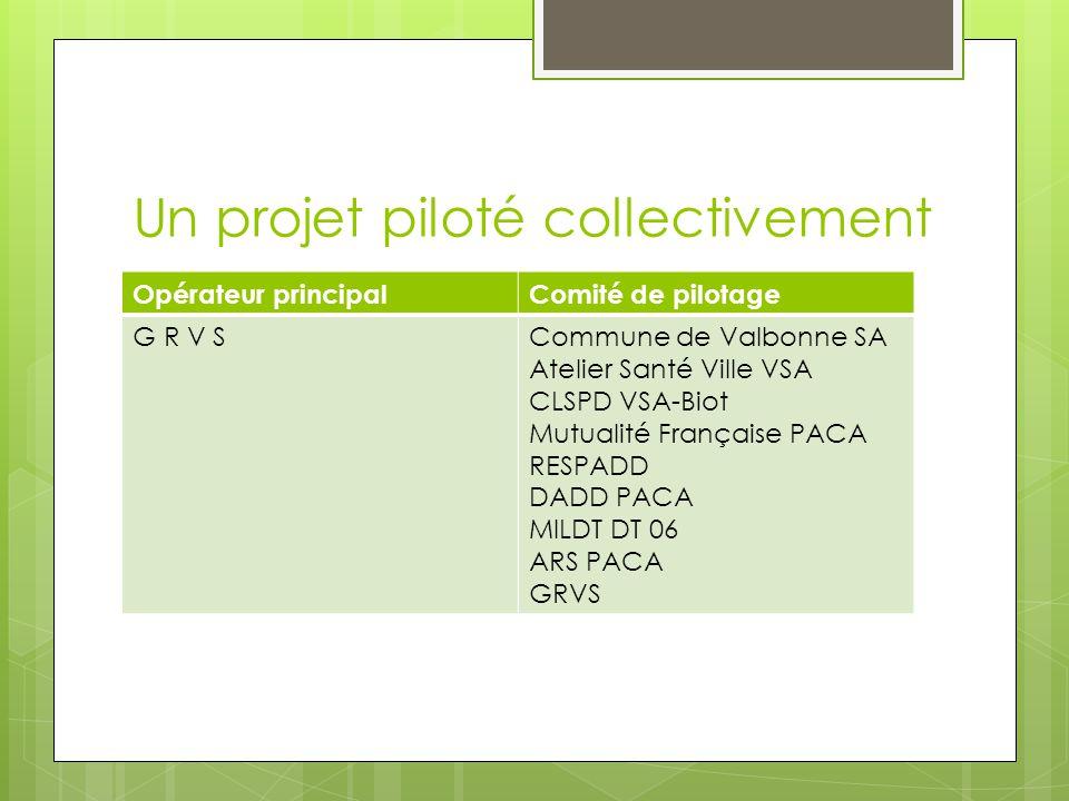 Un projet piloté collectivement Opérateur principalComité de pilotage G R V SCommune de Valbonne SA Atelier Santé Ville VSA CLSPD VSA-Biot Mutualité Française PACA RESPADD DADD PACA MILDT DT 06 ARS PACA GRVS