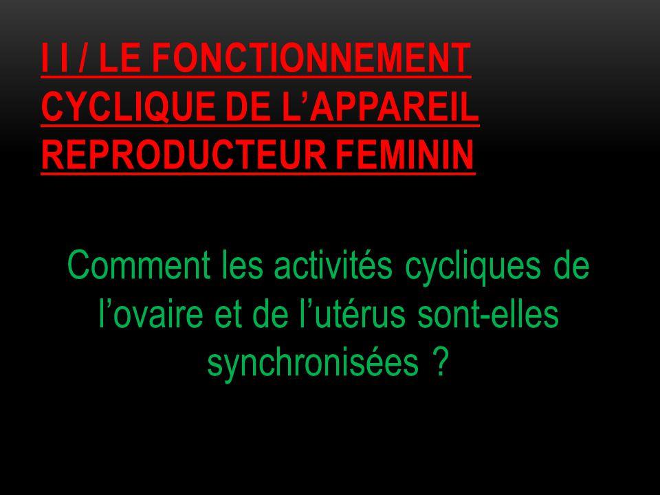 I I / LE FONCTIONNEMENT CYCLIQUE DE L'APPAREIL REPRODUCTEUR FEMININ Comment les activités cycliques de l'ovaire et de l'utérus sont-elles synchronisée