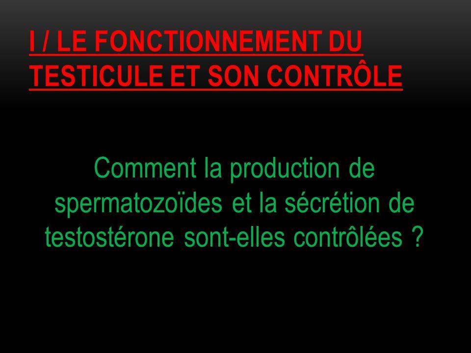 I / LE FONCTIONNEMENT DU TESTICULE ET SON CONTRÔLE Comment la production de spermatozoïdes et la sécrétion de testostérone sont-elles contrôlées ?