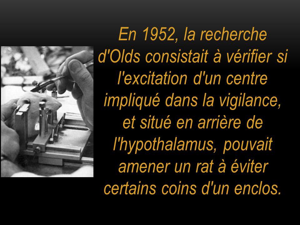 En 1952, la recherche d'Olds consistait à vérifier si l'excitation d'un centre impliqué dans la vigilance, et situé en arrière de l'hypothalamus, pouv
