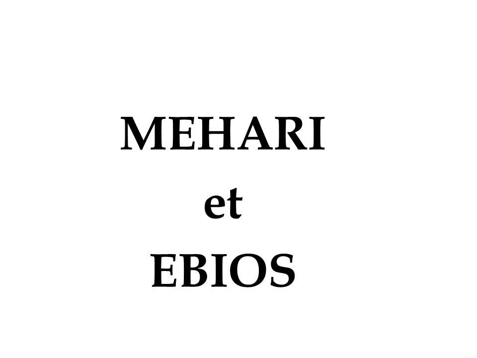 MEHARI et EBIOS