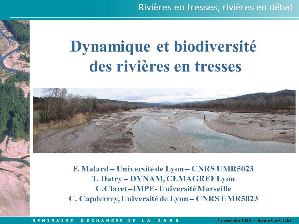 S E M I N A I R E D' E C H A N G E S D E L A Z A B R 4 novembre 2010 - Sainte Croix (26) Rivières en tresses, rivières en débat Dynamique et biodiversité des rivières en tresses F.
