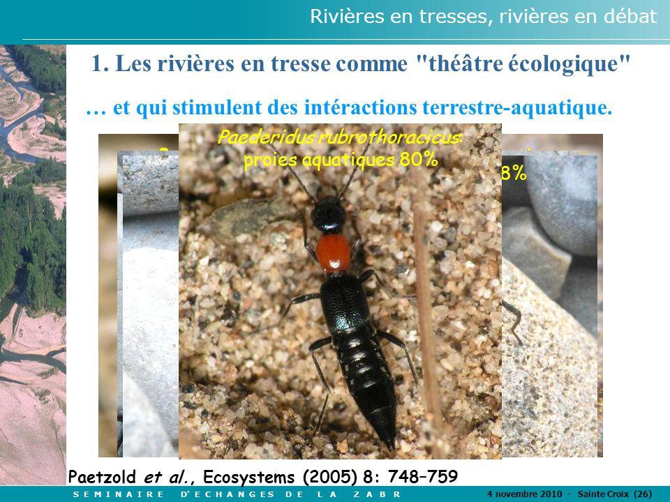 S E M I N A I R E D' E C H A N G E S D E L A Z A B R 4 novembre 2010 - Sainte Croix (26) Rivières en tresses, rivières en débat Nebria picicornis: proies aquatiques 1OO% Bembidion sp.: proies exclusivement aquatiques Arctosa cinerea: proies aquatiques 56 % Pardosa wagleri: proies aquatiques 48% Paederidus rubrothoracicus: proies aquatiques 80% Paetzold et al., Ecosystems (2005) 8: 748–759 1.
