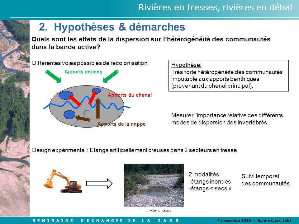 S E M I N A I R E D' E C H A N G E S D E L A Z A B R 4 novembre 2010 - Sainte Croix (26) Rivières en tresses, rivières en débat Quels sont les effets de la dispersion sur l'hétérogénéité des communautés dans la bande active.