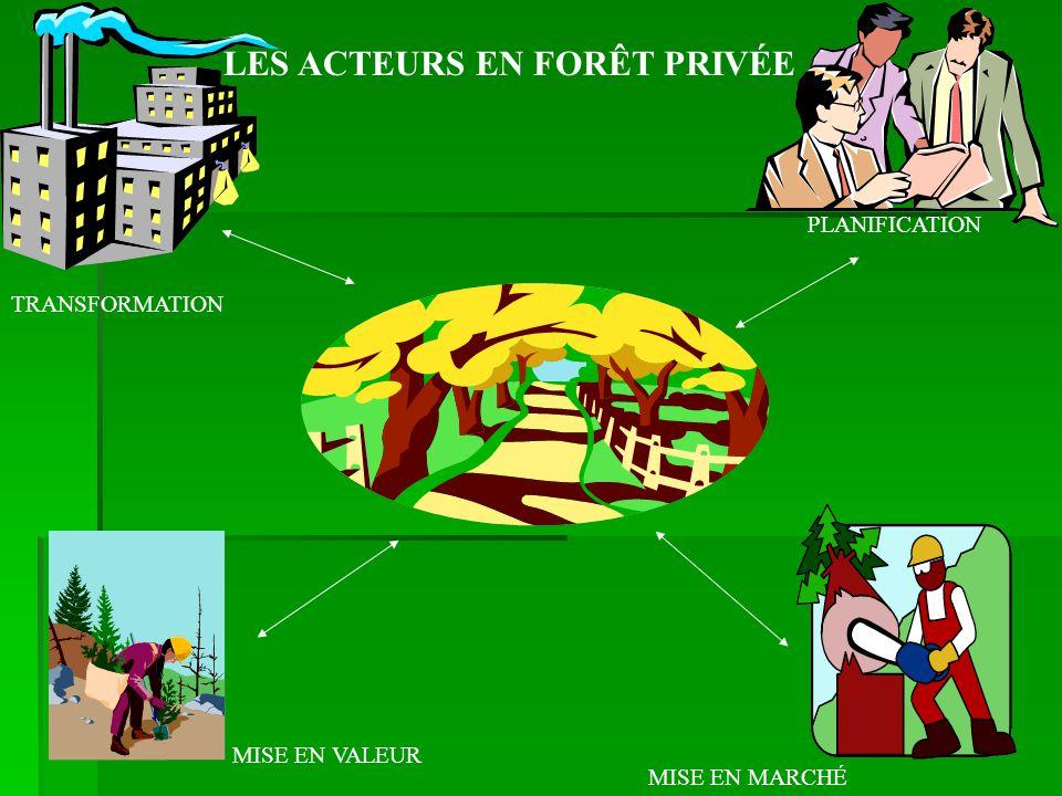 PLANIFICATION MISE EN MARCHÉ MISE EN VALEUR TRANSFORMATION LES ACTEURS EN FORÊT PRIVÉE