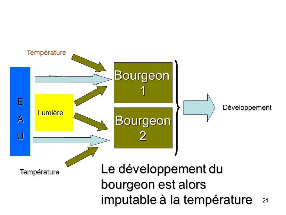 21 Bourgeon1 Eau Lumière Température Bourgeon2 Eau Lumière Température Développement Lumière EAU Le développement du bourgeon est alors imputable à la