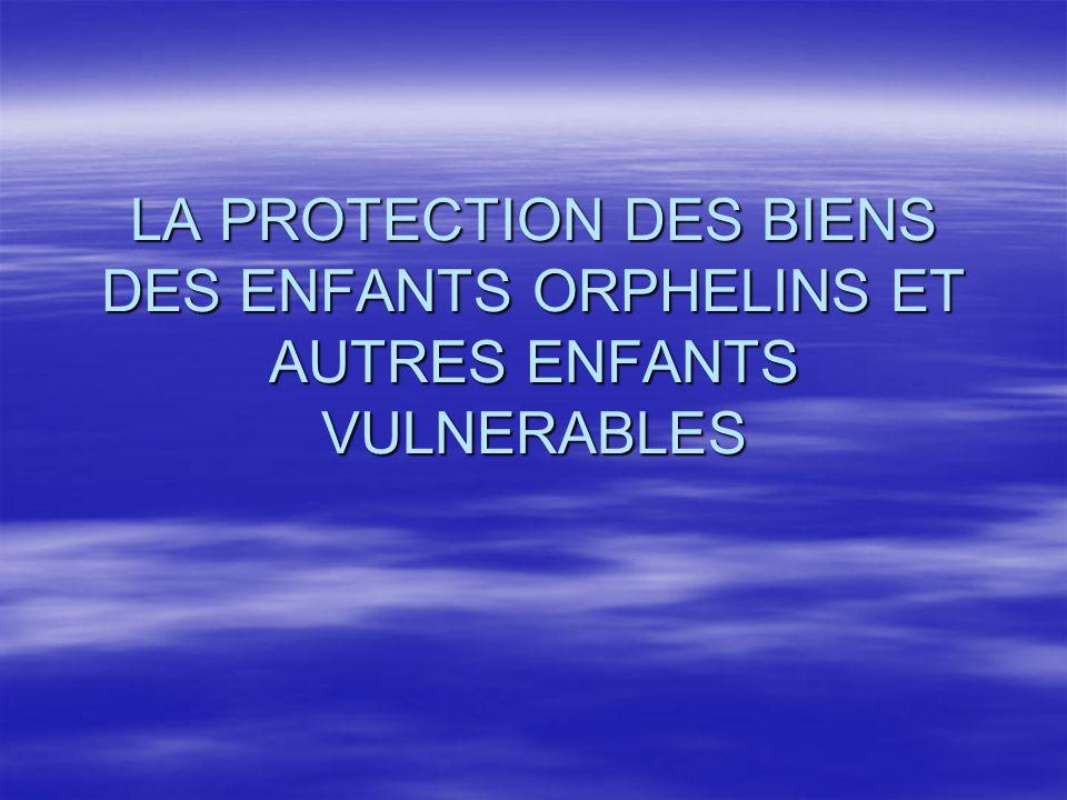 NECESSITE DE REFORME  Limites des mécanismes de protection  Tentatives de solutions