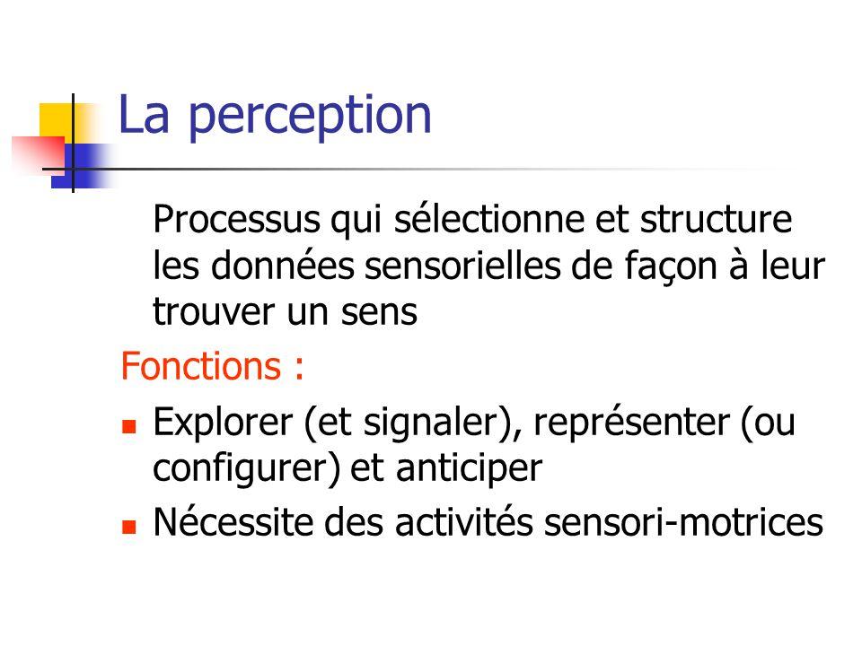 La perception Processus qui sélectionne et structure les données sensorielles de façon à leur trouver un sens Fonctions : Explorer (et signaler), représenter (ou configurer) et anticiper Nécessite des activités sensori-motrices