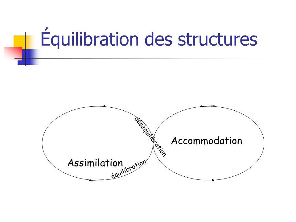 Équilibration des structures Assimilation Accommodation équilibration déséquilibration