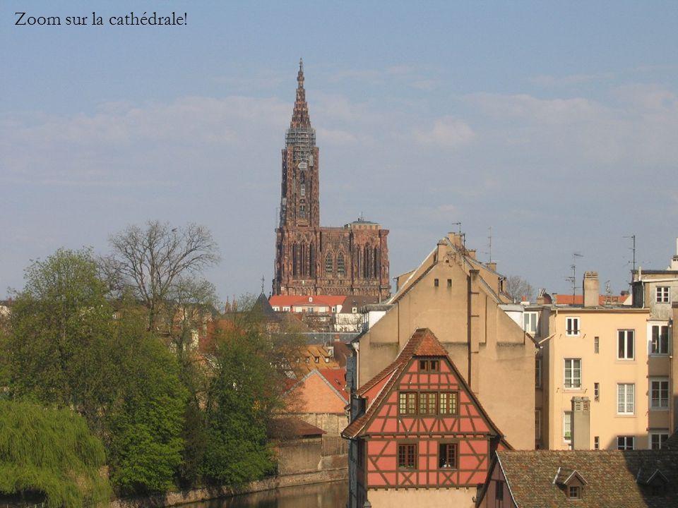 Zoom sur la cathédrale!