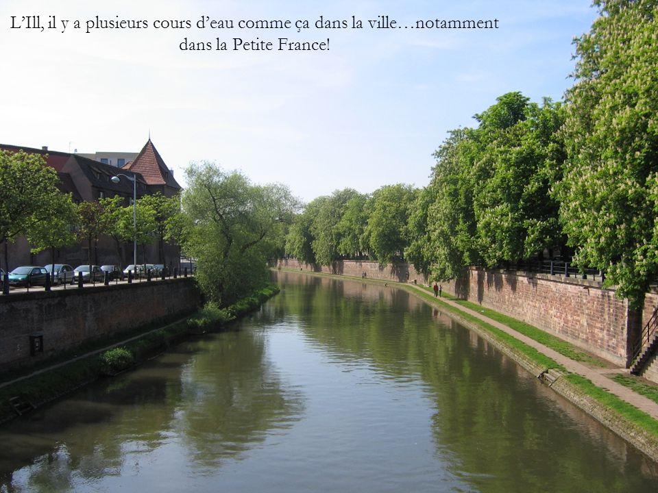 L'Ill, il y a plusieurs cours d'eau comme ça dans la ville…notamment dans la Petite France!