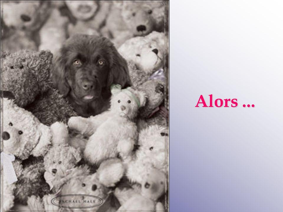 Retrouvez les meilleurs diaporamas PPS d'humour et de divertissement sur http://www.diaporamas-a-la-con.com http://www.diaporamas-a-la-con.com Alors...