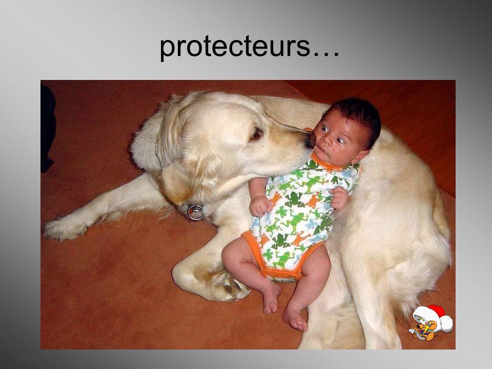 protecteurs…