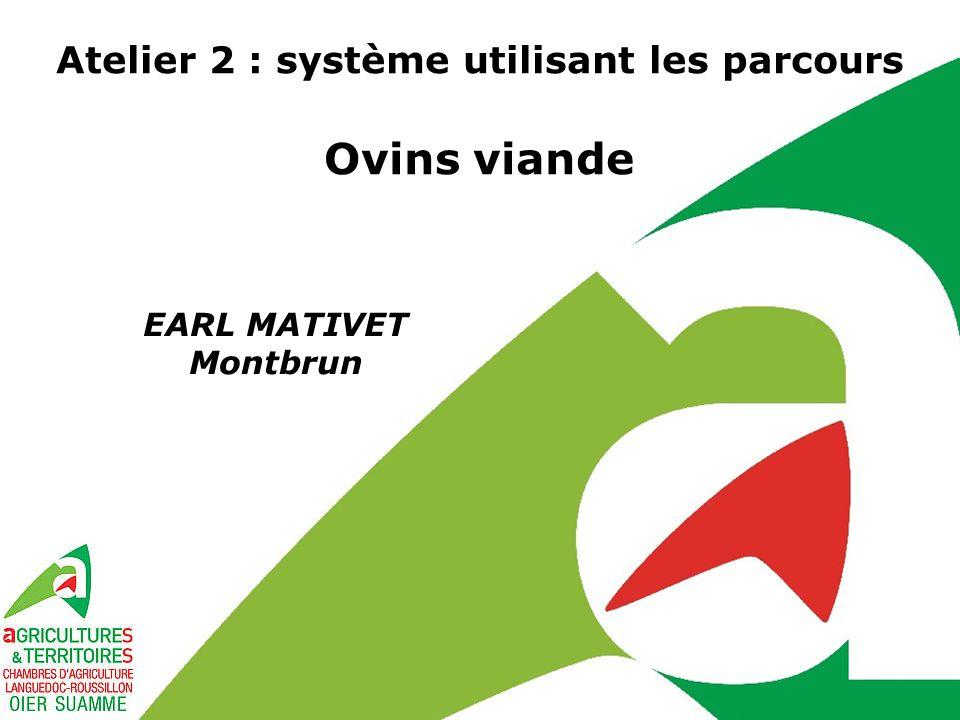 Atelier 2 : système utilisant les parcours Ovins viande EARL MATIVET Montbrun