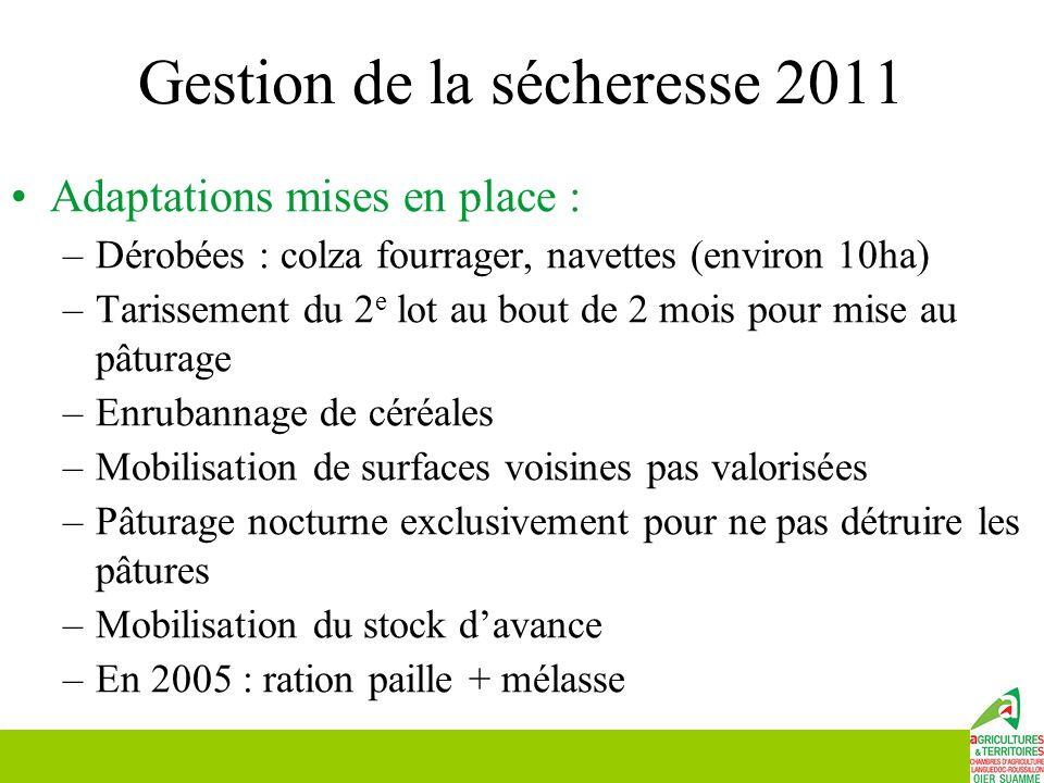 Gestion de la sécheresse 2011 Adaptations mises en place : –Dérobées : colza fourrager, navettes (environ 10ha) –Tarissement du 2 e lot au bout de 2 m