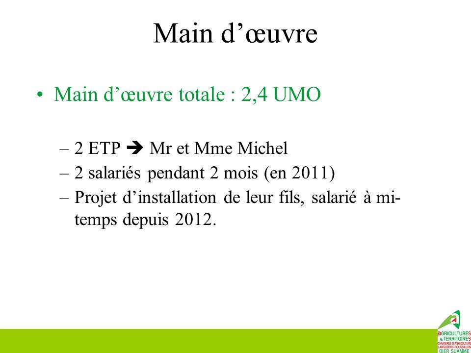 Main d'œuvre Main d'œuvre totale : 2,4 UMO –2 ETP  Mr et Mme Michel –2 salariés pendant 2 mois (en 2011) –Projet d'installation de leur fils, salarié