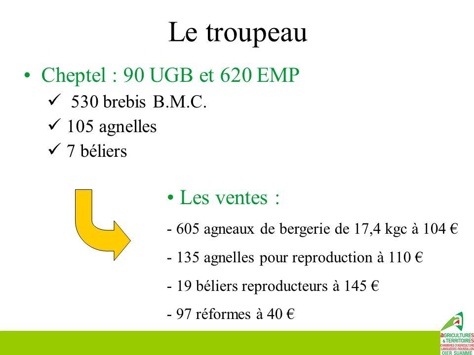 Le troupeau Cheptel : 90 UGB et 620 EMP 530 brebis B.M.C. 105 agnelles 7 béliers Les ventes : - 605 agneaux de bergerie de 17,4 kgc à 104 € - 135 agne