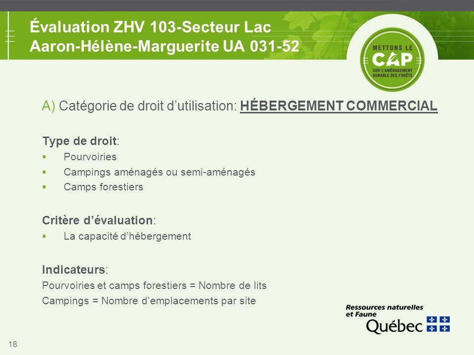 18 Évaluation ZHV 103-Secteur Lac Aaron-Hélène-Marguerite UA 031-52 A) Catégorie de droit d'utilisation: HÉBERGEMENT COMMERCIAL Type de droit:  Pourv