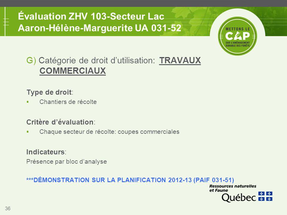 36 Évaluation ZHV 103-Secteur Lac Aaron-Hélène-Marguerite UA 031-52 G) Catégorie de droit d'utilisation: TRAVAUX COMMERCIAUX Type de droit:  Chantier
