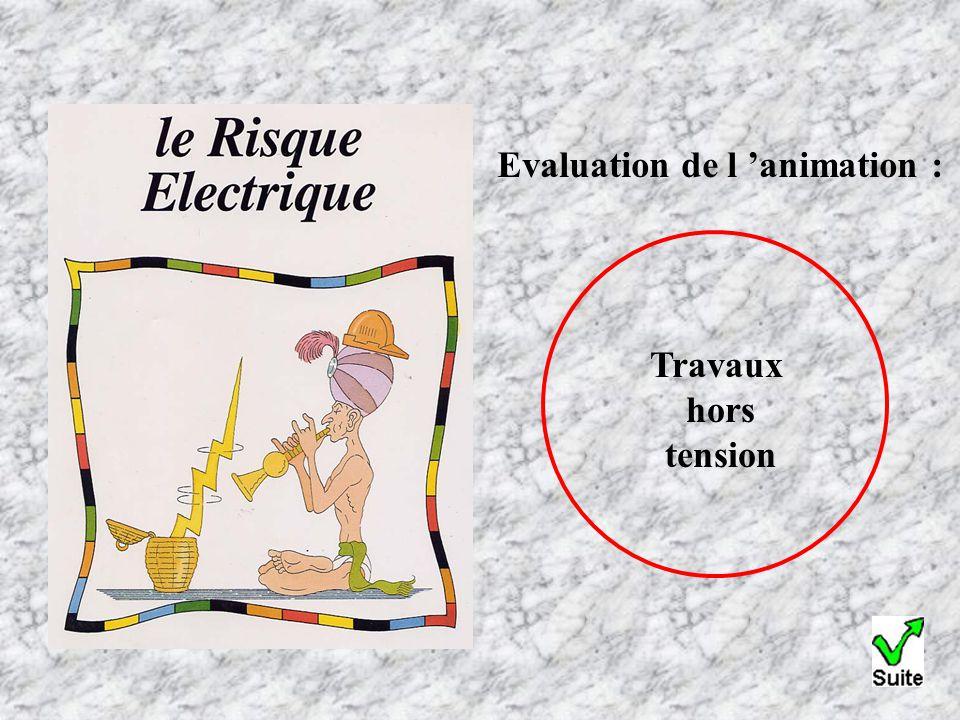 Evaluation de l 'animation : Travaux hors tension