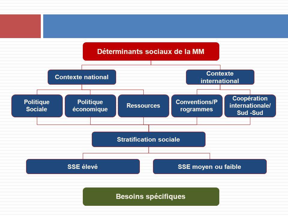 Déterminants sociaux de la MM Contexte national Contexte international Politique Sociale Politique économique Ressources Stratification sociale Besoin