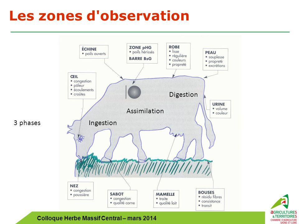 Colloque Herbe Massif Central – mars 2014 Les 4 étapes du diagnostic OBSALIM 1.