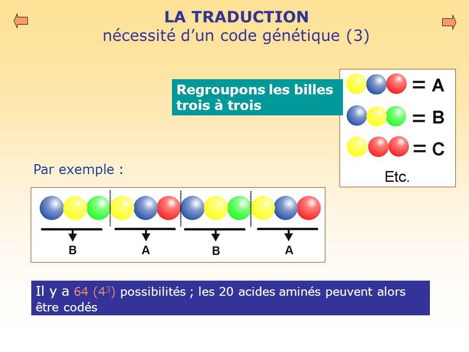 LA TRADUCTION nécessité d'un code génétique (3) Il y a 64 (4 3 ) possibilités ; les 20 acides aminés peuvent alors être codés Regroupons les billes trois à trois Par exemple :