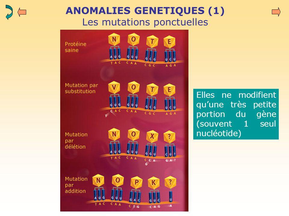 ANOMALIES GENETIQUES (1) Les mutations ponctuelles Elles ne modifient qu'une très petite portion du gène (souvent 1 seul nucléotide)