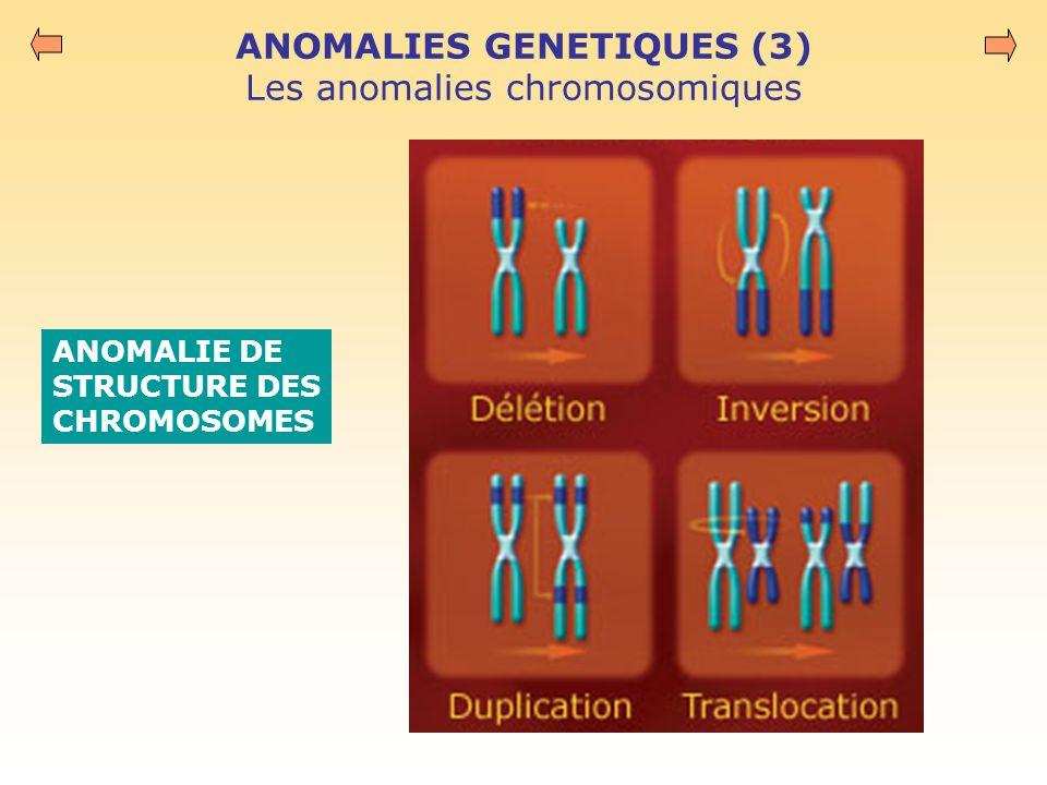 ANOMALIES GENETIQUES (3) Les anomalies chromosomiques ANOMALIE DE STRUCTURE DES CHROMOSOMES