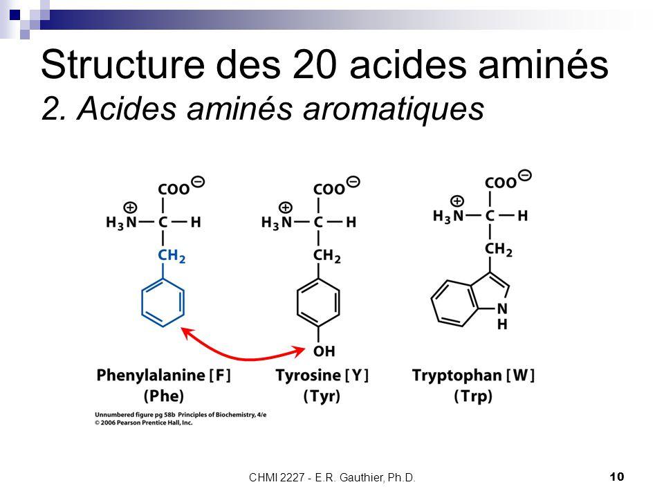 CHMI 2227 - E.R. Gauthier, Ph.D.10 Structure des 20 acides aminés 2. Acides aminés aromatiques