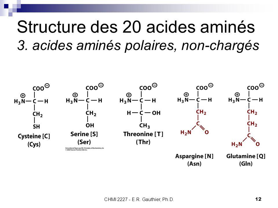 CHMI 2227 - E.R. Gauthier, Ph.D.12 Structure des 20 acides aminés 3. acides aminés polaires, non-chargés