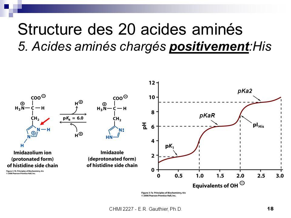 CHMI 2227 - E.R. Gauthier, Ph.D.18 Structure des 20 acides aminés 5. Acides aminés chargés positivement:His pKaR pKa2