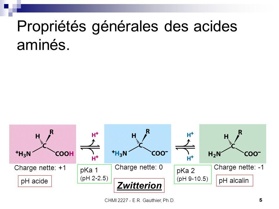 CHMI 2227 - E.R. Gauthier, Ph.D.5 Propriétés générales des acides aminés. Zwitterion Charge nette: +1 Charge nette: 0Charge nette: -1 pH acide pH alca