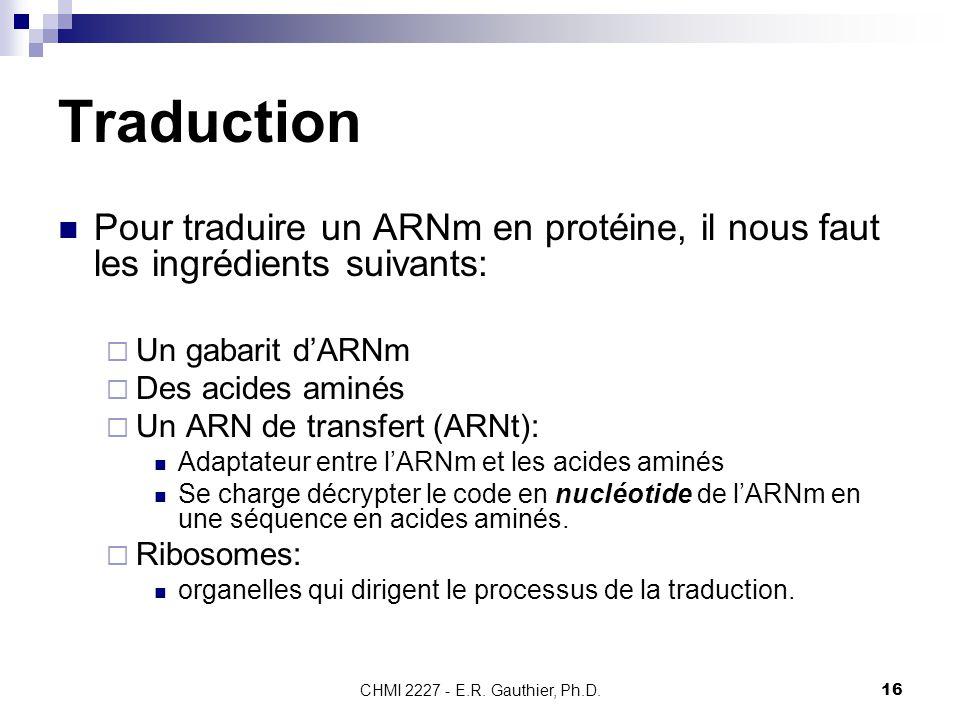 CHMI 2227 - E.R. Gauthier, Ph.D.16 Traduction Pour traduire un ARNm en protéine, il nous faut les ingrédients suivants:  Un gabarit d'ARNm  Des acid