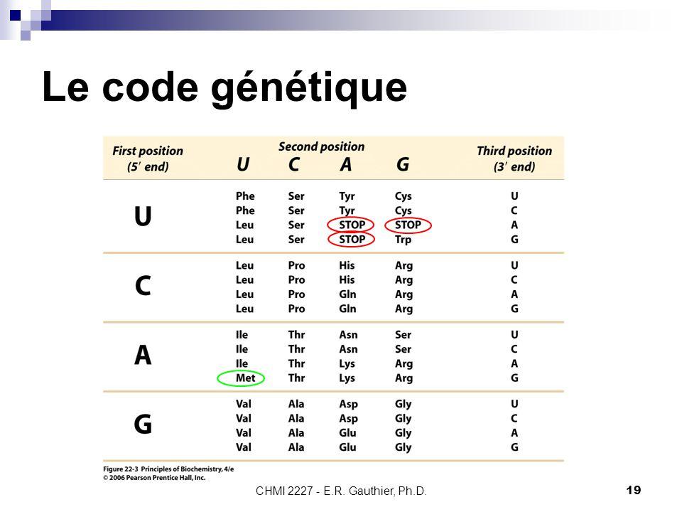 CHMI 2227 - E.R. Gauthier, Ph.D.19 Le code génétique