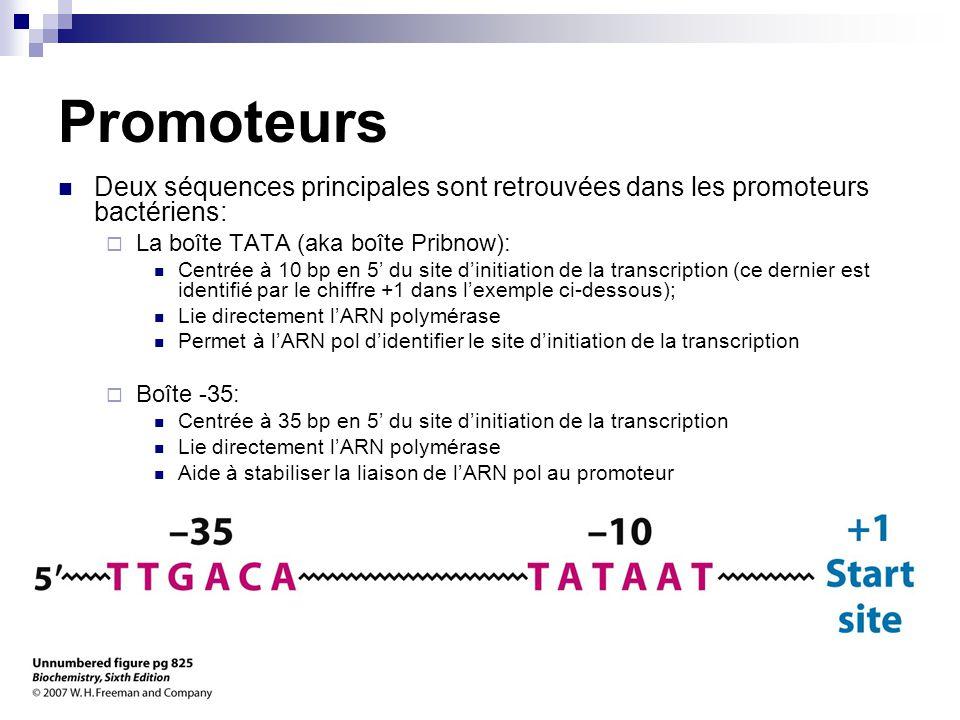 CHMI 2227 - E.R. Gauthier, Ph.D.9 Promoteurs Deux séquences principales sont retrouvées dans les promoteurs bactériens:  La boîte TATA (aka boîte Pri