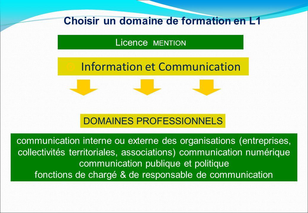 Licence MENTION DOMAINES PROFESSIONNELS  Information et Communication communication interne ou externe des organisations (entreprises, collectivités