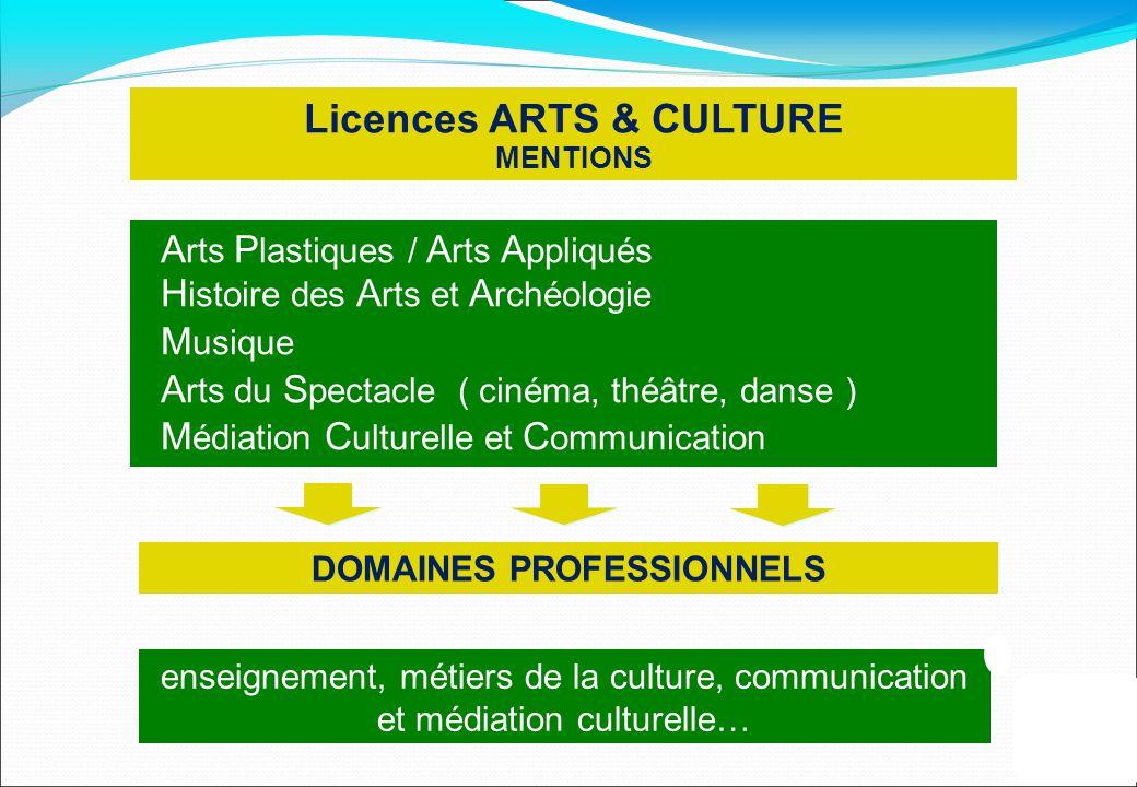 Licences ARTS & CULTURE MENTIONS DOMAINES PROFESSIONNELS enseignement, métiers de la culture, communication et médiation culturelle… A rts P lastiques