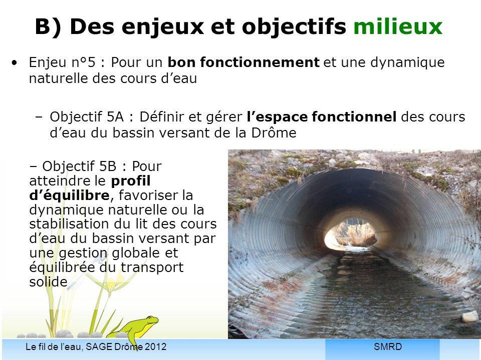 SMRDLe fil de l'eau, SAGE Drôme 2012 Enjeu n°5 : Pour un bon fonctionnement et une dynamique naturelle des cours d'eau –Objectif 5A : Définir et gérer