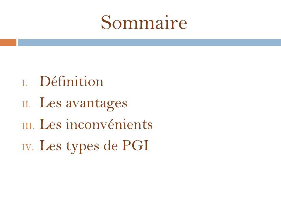 Sommaire I. Définition II. Les avantages III. Les inconvénients IV. Les types de PGI