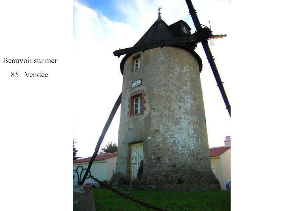 Moulin des Justices 85 St Michel Mont Mercure Système « Berton » pour les ailes
