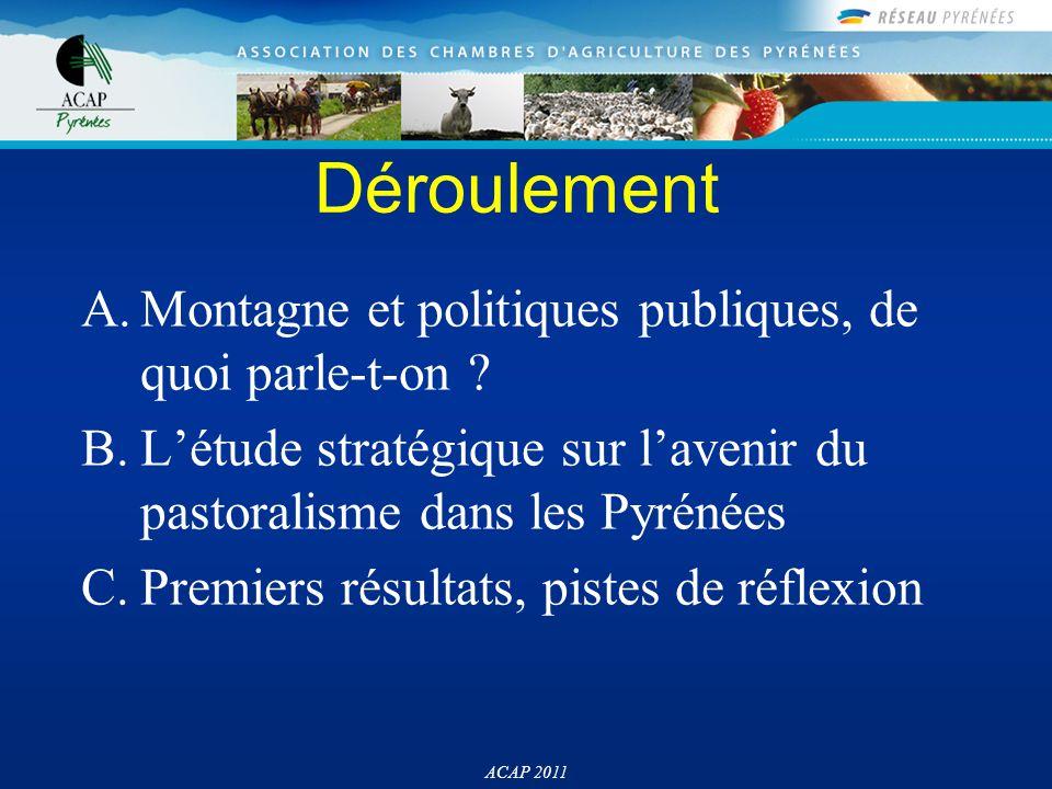 Déroulement A.Montagne et politiques publiques, de quoi parle-t-on ? B.L'étude stratégique sur l'avenir du pastoralisme dans les Pyrénées C.Premiers r