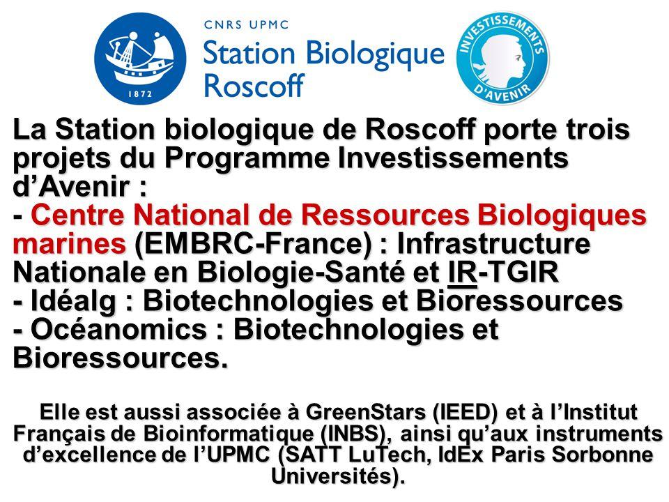 La Station biologique de Roscoff porte trois projets du Programme Investissements d'Avenir : Centre National de Ressources Biologiques marines(EMBRC-F