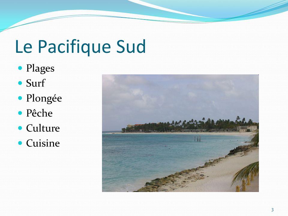 Le Pacifique Sud Plages Surf Plongée Pêche Culture Cuisine 3