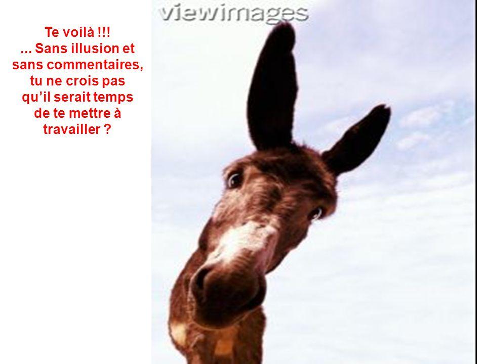 SUIS LES INSTRUCTIONS : 1.- PENCHE LA TETE VERS TON EPAULE DROITE 2.- APPROCHE LA TETE A 15 cm DE L'ECRAN 3.- SANS BOUGER LA TETE CLIQUE SUR LA SOURIS ====]]\\\///////*****<<<<<<<{}{}{}{}{}{}{}{}{}%%~~~~~~~~ ////////^^!~~~~~::---))))*****+++@@@@@@@@<%||||||@@@@@444 +=+=****&^ }}}}}}}]]]]]]]<<<<<<<%{{{{{{===**++++** ***++++++++++++++?????????????/////////////%||||||@@@@@444+=+= ****&^ }}}}}}}]]]]]]]<<<<<<<%////////^^!~~~~~::---))))***** +++@@@@@@@@<%||||||@@@@@444+=+=****&^ }}}}}} }]]]]]]]<<<<<<<%////////^^!~~~~~::---))))*****+++@@@@@@@@ <%/%||||||@@@@@444+=+=****&^ }}}}}}}]]]]]]]<<<<<<<% %{{{{{{===**++++*****++++++++++++++?????????????/////////////