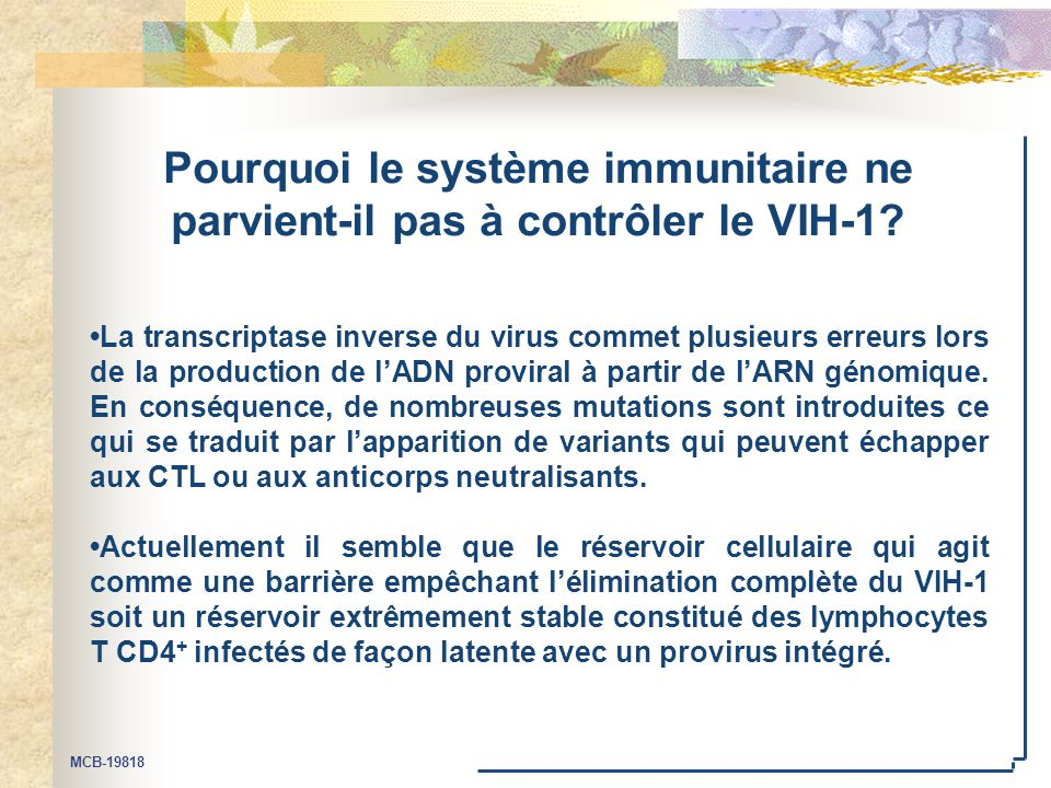 MCB-19818 Pourquoi le système immunitaire ne parvient-il pas à contrôler le VIH-1? La transcriptase inverse du virus commet plusieurs erreurs lors de