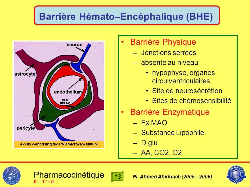 Pharmacocinétique Pr. Ahmed Ahidouch (2005 – 2006) Barrière Hémato–Encéphalique (BHE) Barrière Physique –Jonctions serrées –absente au niveau hypophys