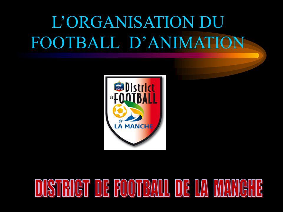 L'ORGANISATION DU FOOTBALL D'ANIMATION