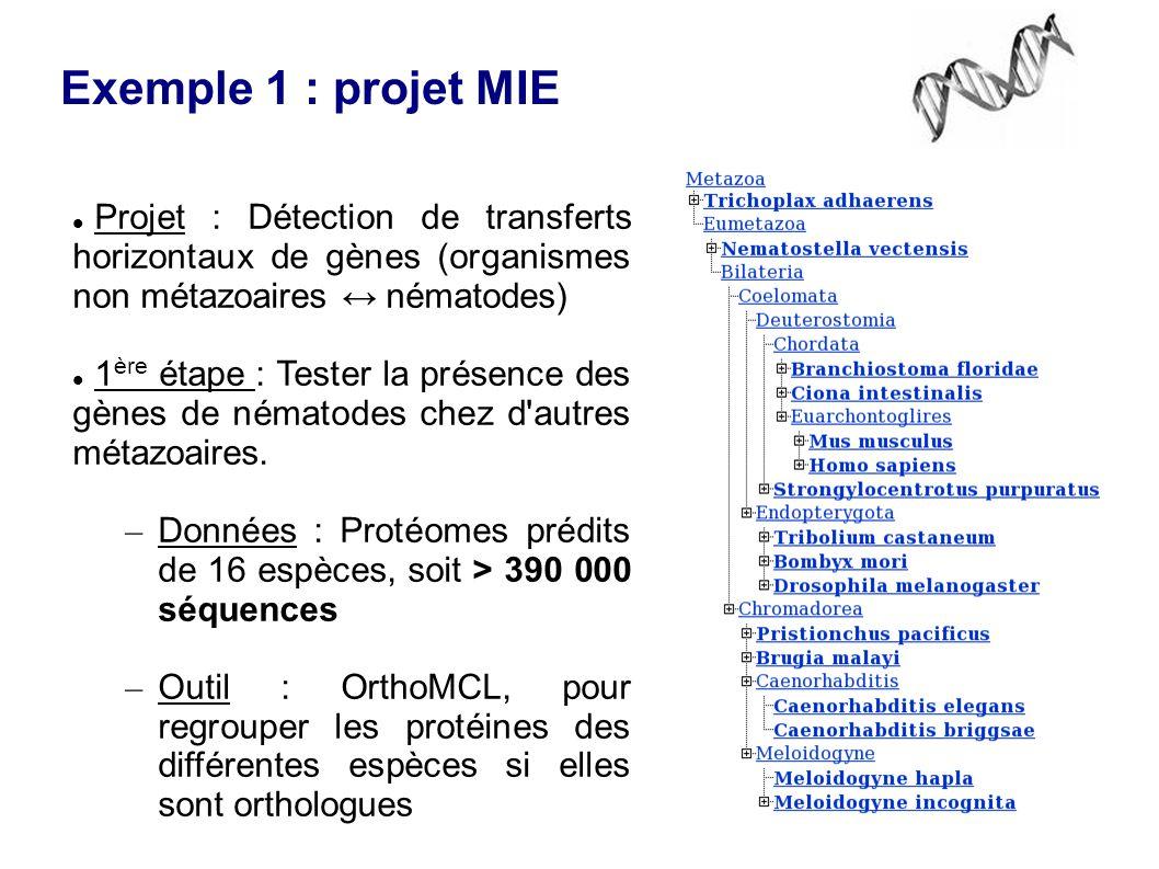 Exemple 1 : projet MIE Projet : Détection de transferts horizontaux de gènes (organismes non métazoaires ↔ nématodes) 1 ère étape : Tester la présence des gènes de nématodes chez d autres métazoaires.