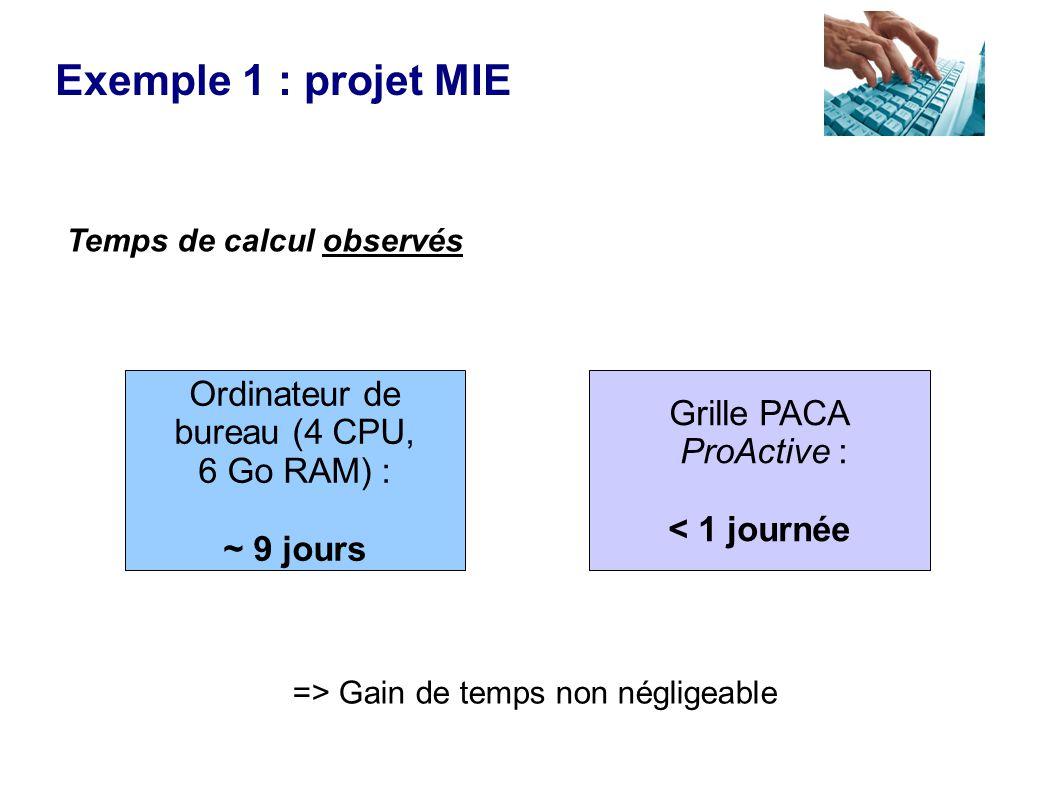 Temps de calcul observés Grille PACA ProActive : < 1 journée Ordinateur de bureau (4 CPU, 6 Go RAM) : ~ 9 jours Exemple 1 : projet MIE => Gain de temps non négligeable